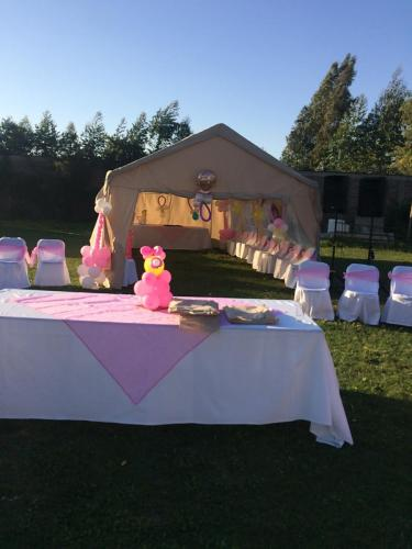 Baby shower en parcela para eventos.
